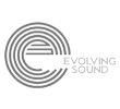 Evolving Sound